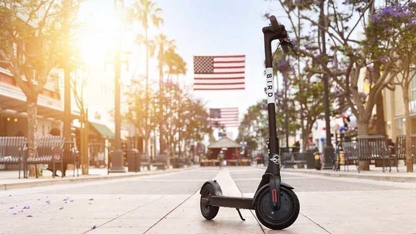 rent bird scooters